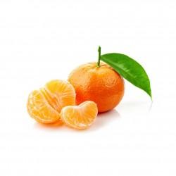 Clementine Siciliane coltivate a Ribera