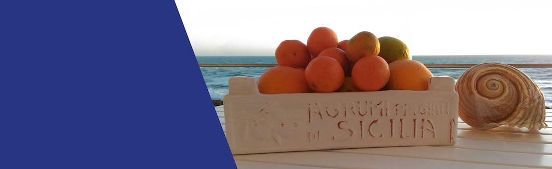 Agrumi di Sicilia: Arancia di Ribera, Arancia Siciliana, Mandarini Tardivi, Clementine senza Semi, Cedri e Pompelmi SIciliani